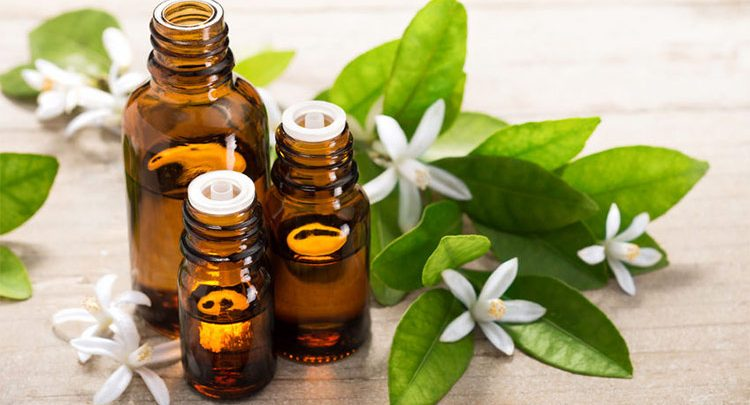Aromatherapy, Aromatherapy market, Aromatherapy market research, Aromatherapy market report, Aromatherapy market analysis, Aromatherapy market forecast, Aromatherapy market strategy, Aromatherapy market growth, doTERRA International, Edens Garden, Young Living Essential Oils, Frontier Natural Products Co-op, Rocky Mountain Oils, Mountain Rose Herbs