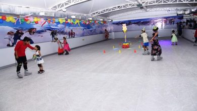 SYNTHETIC ICE SKetTING RINK Market